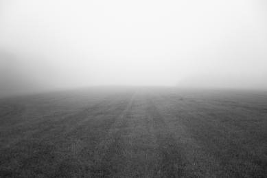 foggy_morning_susquehanna_state_park (3 of 6)