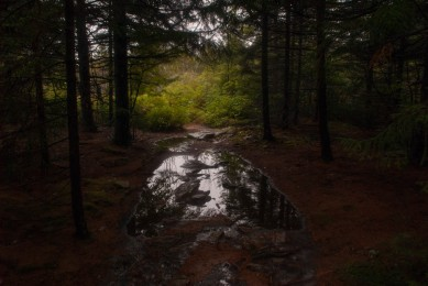 dolly_sods_wilderness (6 of 34)