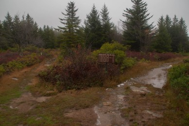 dolly_sods_wilderness (7 of 34)