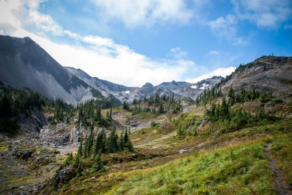 olympic_national_park-11