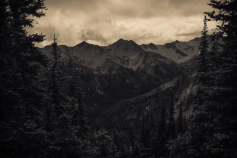 olympic_national_park_Lillian_Ridge_Trail