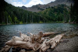 olympic_national_park_Moose_Lake