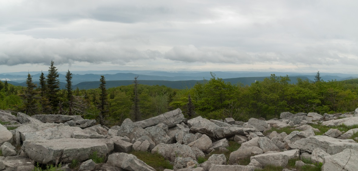 Dolly_Sods (4 of 4)
